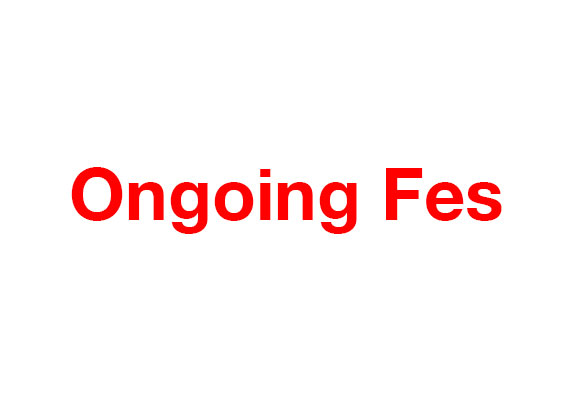 ongoingfes_DM